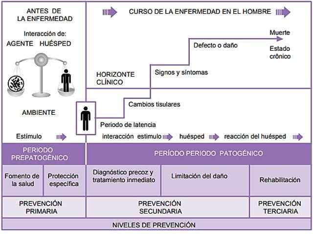 PAE-proceso-atencion-enfermeria-diabetes-mellitus