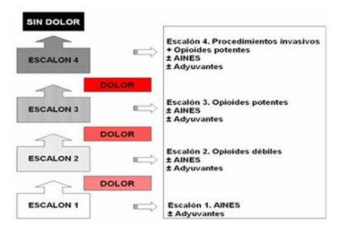 Etiología Y Tratamiento Del Dolor Durante El Cambio De Apósito Ocronos Editorial Científico Técnica