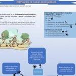 definicion-infografia-prevencion-caidas-domicilio