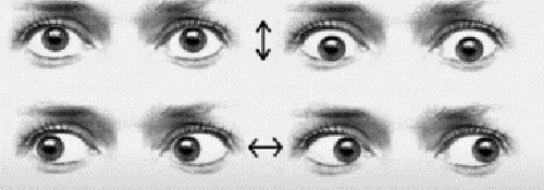 ejercicio-terapeutico-ojos