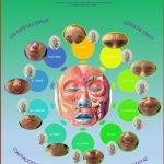 fisioterapia-paralisis-facial