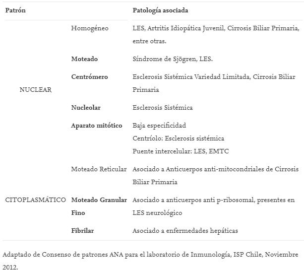 4-inmunofluorescencia-indirecta-IFI-celulas-HEP-2-lupus,