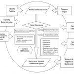 2-modelo-actuacion-nutricion-comunitaria