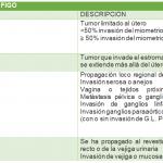 cancer-endometrial-clasificacion-figo