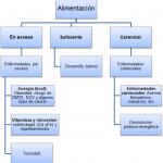 1-nutricion-dietetica-principios-generales